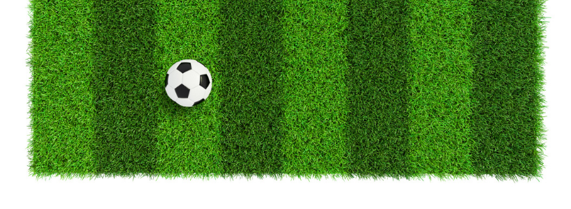 Sports Venues with fake grass